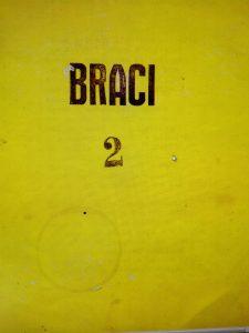 BRACI 2