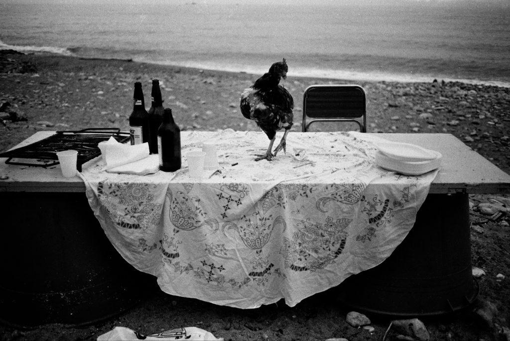 press 07_Letizia Battaglia_Nella spiaggia della Arenella la festa e finita_Palermo1986